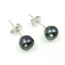 Black Freshwater Pearl Earstuds - STERLING SILVER